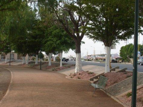 nainari_lagoon_ciudad_obregon_sonora_mexico_02
