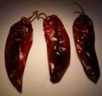 chile-colorado-r-e1274503080677